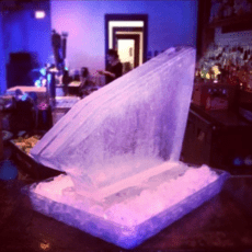 Single Track Shot Block by Full Spectrum Ice Sculptures