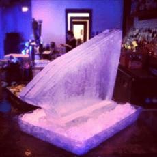 Single Track Shot Block by Full Spectrum Ice Sculptures